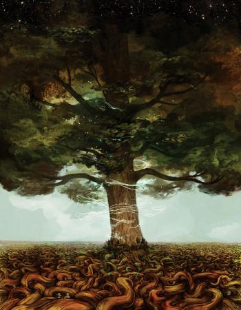 drzewo życia melora
