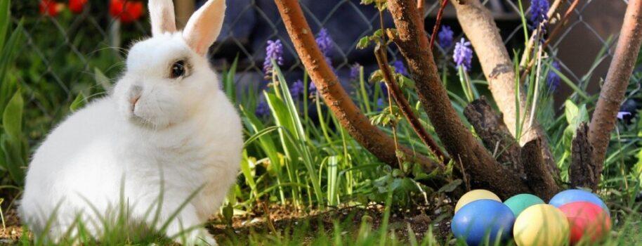 Tradycyjna pogańska Wielkanoc