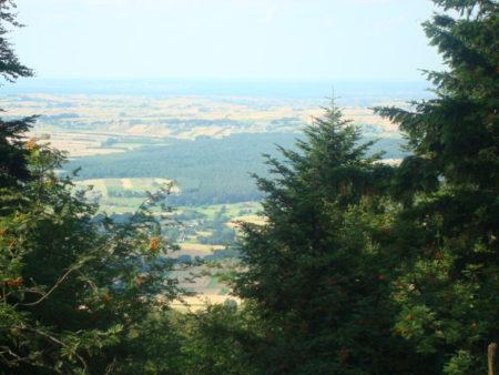 Krajobraz z tarasu widokowego przy Łysej Górze